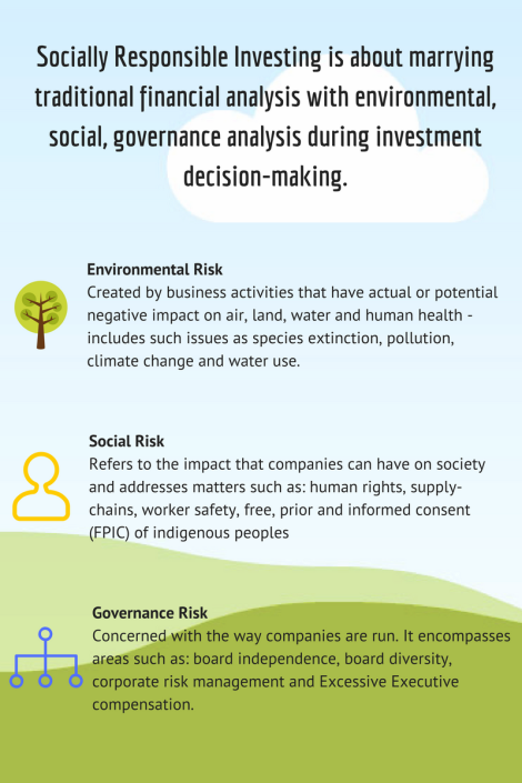 Socially responsible investing and the analysis of environmental, social and governance risk